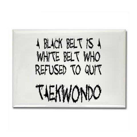 taekwondo black belt essay