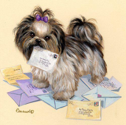 Shih Tzu Fan Mail-LF Suzanne Renaud http://www.amazon.com/dp/B00FK8QW2C/ref=cm_sw_r_pi_dp_IZb9vb1VB0G65