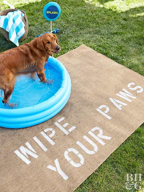 Create a puppy-ready splash pad with this adorable outdoor rug.