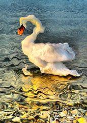 Odon Czintos - Dance of Swans