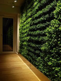 office adas features lime. Indoor Living Wall Office - Google Search Adas Features Lime L
