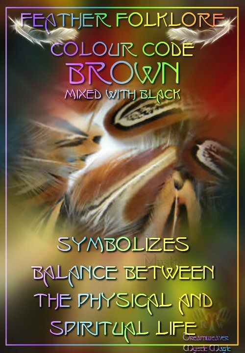 Brown/Black Feathers - symbolizes balance between the physical and spiritual life
