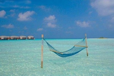 hammocking in style...