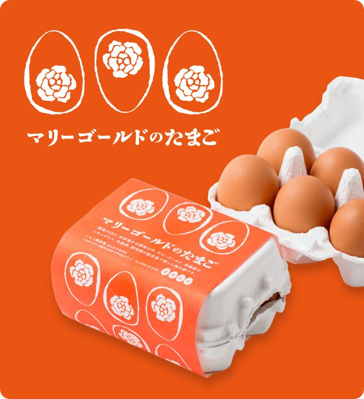 いとう養鶏場(株式会社 伊東養鶏場)の商品をご紹介します。いとう養鶏場は佐賀県武雄市で卵の生産・販売をしております。昭和36年の創業以来、自然豊かな環境の中、天然の水と抗生物質などを使用しないオリジナルフードにこだわり、生まれたてのひよこから親鶏まで、健康に育った鶏が産んだ卵をご提供いたします。