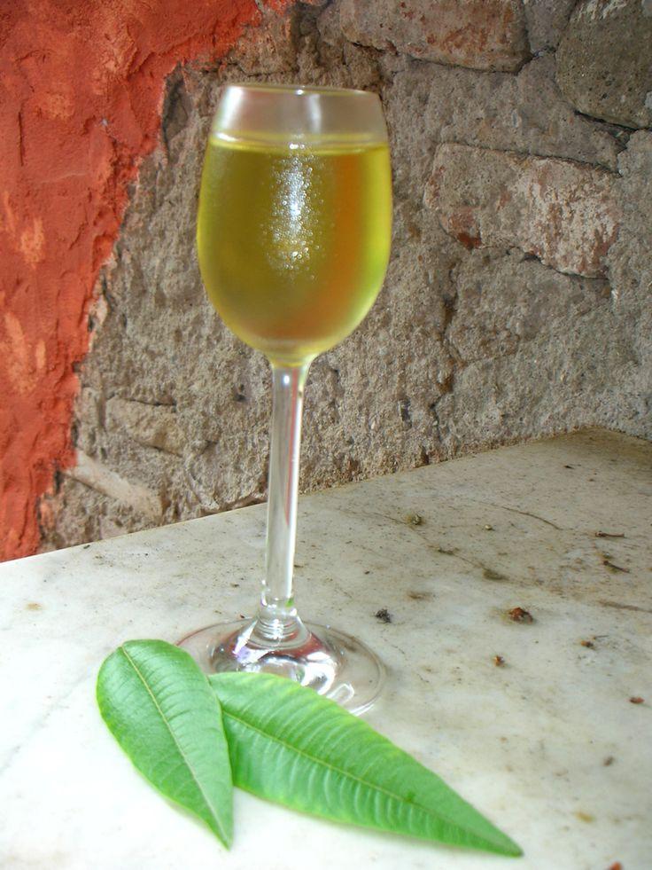 Liquore digestivo di erba cedrina