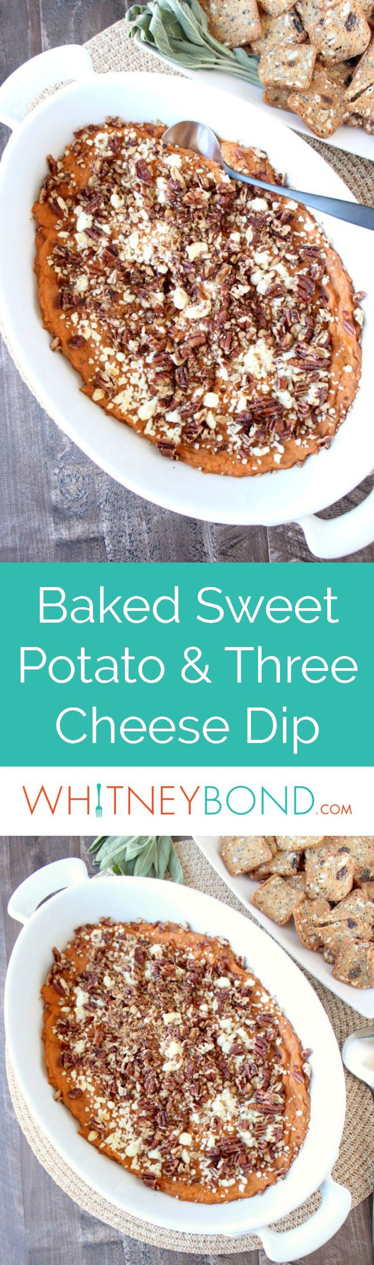 Creamy sweet potatoes are combined with three cheeses & spices in this scrumptious new cheese dip recipe that's both vegetarian & gluten free!