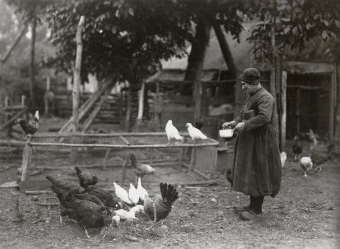 Vrouw uit Heeze in dagelijkse kleding 1 - A.G. van AgtmaalDatering:1918 - 1941