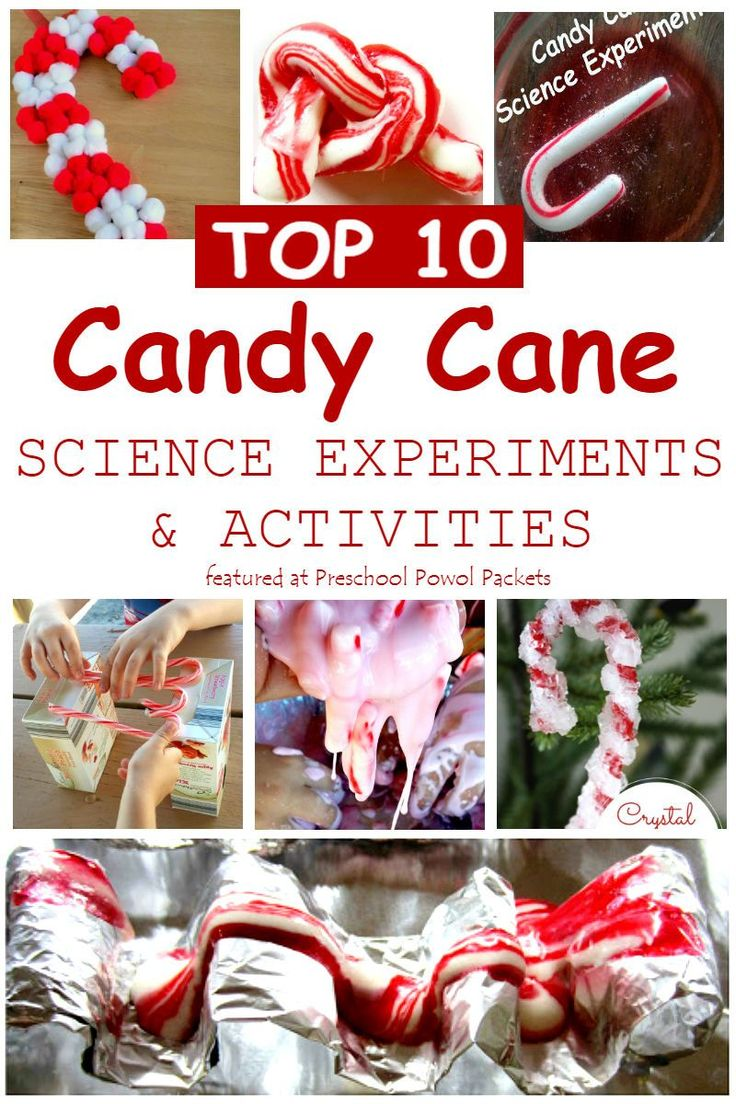 3268 best Hands On Science images on Pinterest | Preschool science ...