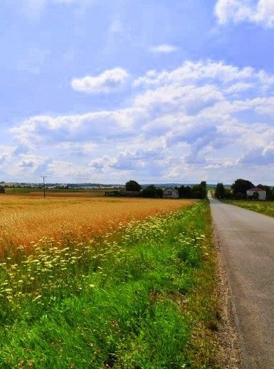 Beautiful country side Poland