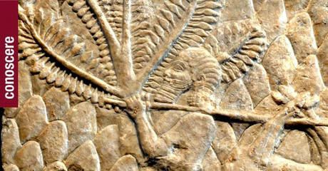 Le civiltà più antiche: Egitto e Mesopotamia / Didattica per le scuole - Museo di Scultura Antica Giovanni Barracco