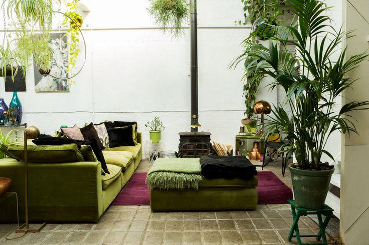 #ClaptonTram #ClaptonTramDepot #Hackney #Urban #Jungle #Lofts for Rent @ClaptonTram is a #Daylight #Film & #Photography #Design #Studio based in #Clapton #Hackney #East #London Available for #filming #photoshoots www.ClaptonTram.com #Plants #Green