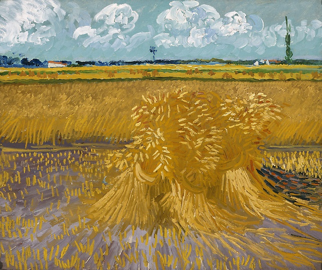 """Wheatfield with Sheaves"" by Vincent Van Gogh: Vincent Of Onofrio, Vangogh, Vincent Vans Gogh, Art, Sheav, Vincent Van Gogh, Painting, Wheatfield, Wheat Fields"