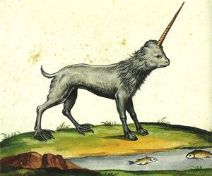 Monsters: A Bestiary of the Bizarre by Christopher Dell This 17th-century unicorn featured a flat face, a lion's mane, cloven hooves in the front and chicken feet in the back, and an accusatory pout.