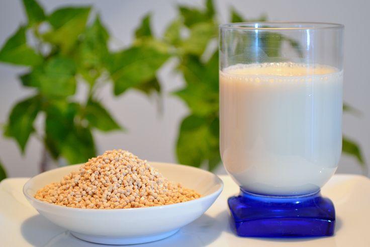 Soy, glicyne soja, milk,  soy lecithin
