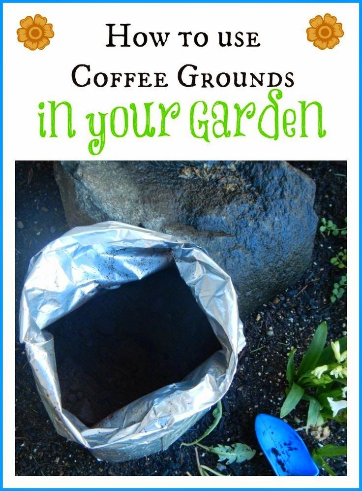 How to Use Coffee Grounds in Your Garden.....