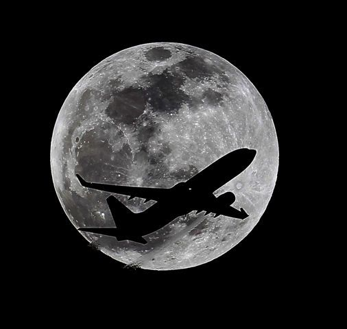Lunar eclipse | Pictures of the week: From kangaroos sunbathing in China to the total eclipse in America - Yahoo News UK