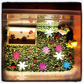 Summer sensory box