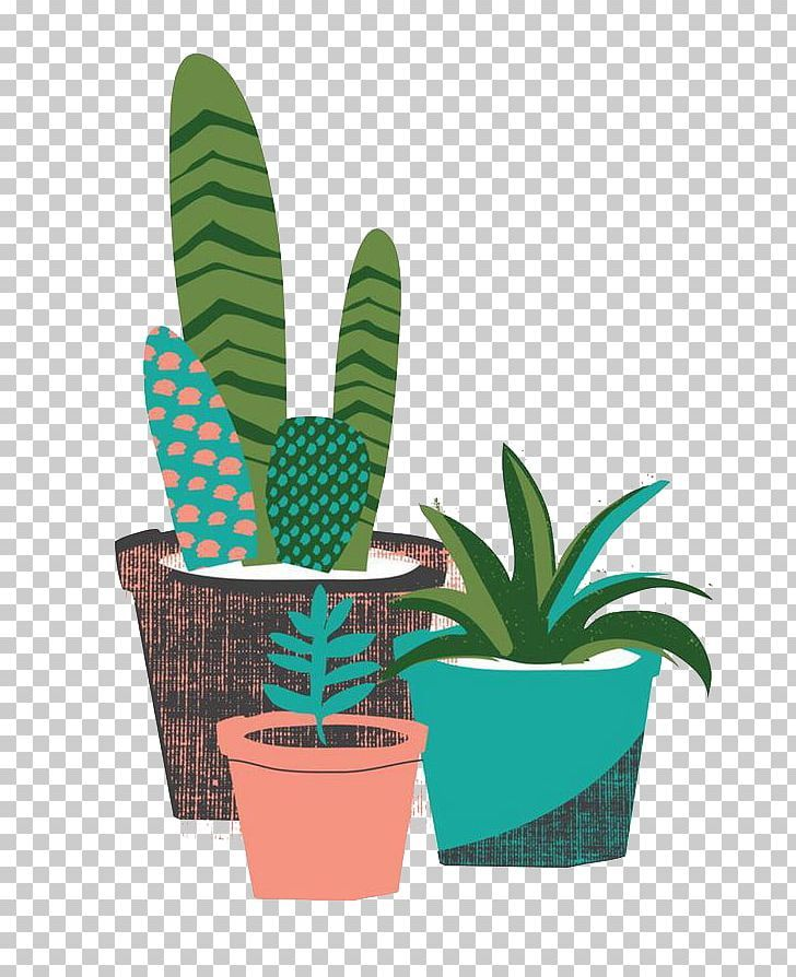 The Cactus Garden Cactaceae Succulent Plant Desert Png Balloon