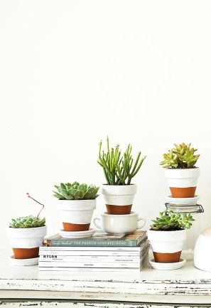 DIY painted pots + indoor gardening! Find out how to create your own.