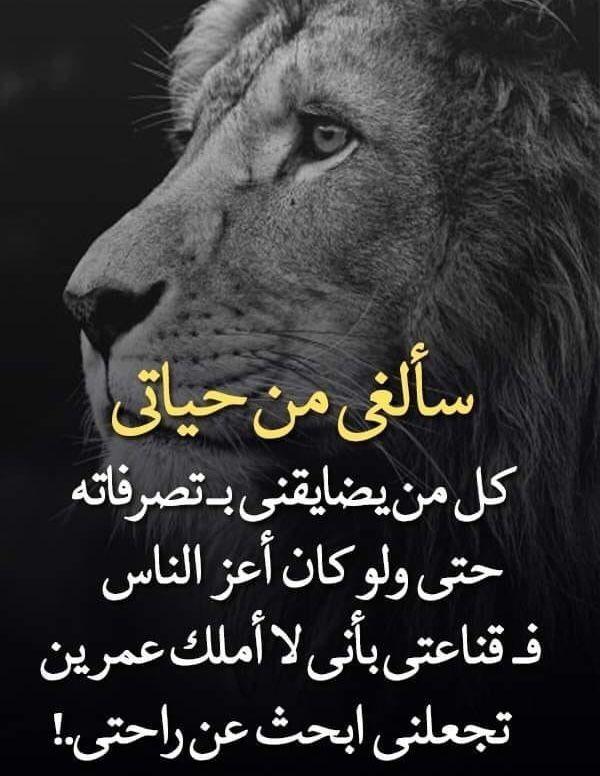لانني انثى عمياء Inspirational Quotes About Success Cool Words Arabic Love Quotes