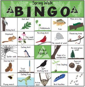 Play Spring Walk Bingo! | Earth day, Bingo and Activities