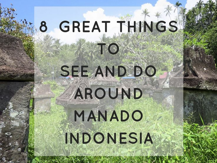 8 things to do in manado indonesia