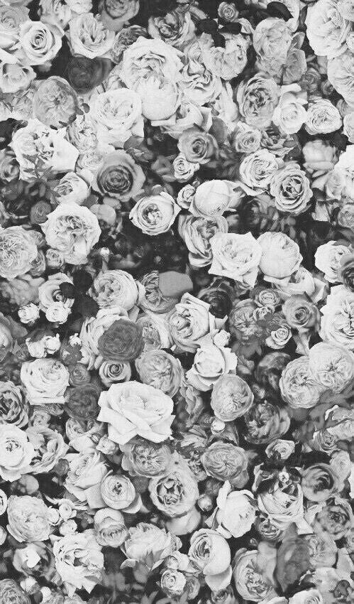#iphonewallpaper #wallpaper #lockscreen #iphone #background #floral #blackandwhite