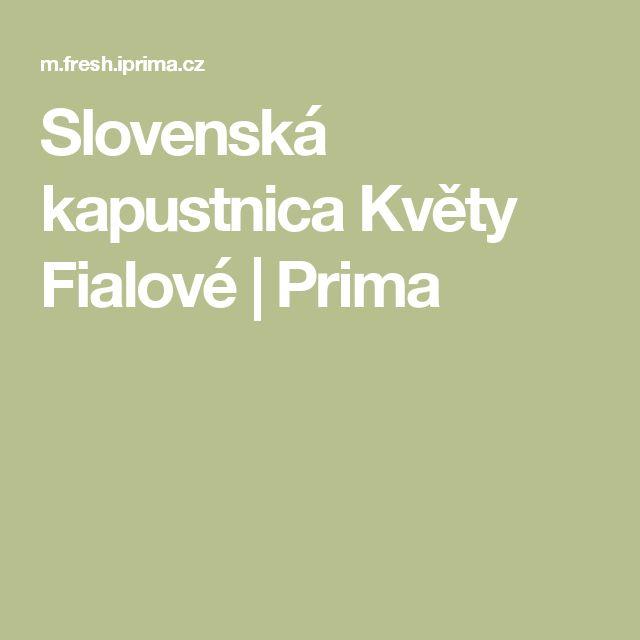 Slovenská kapustnica Květy Fialové   Prima