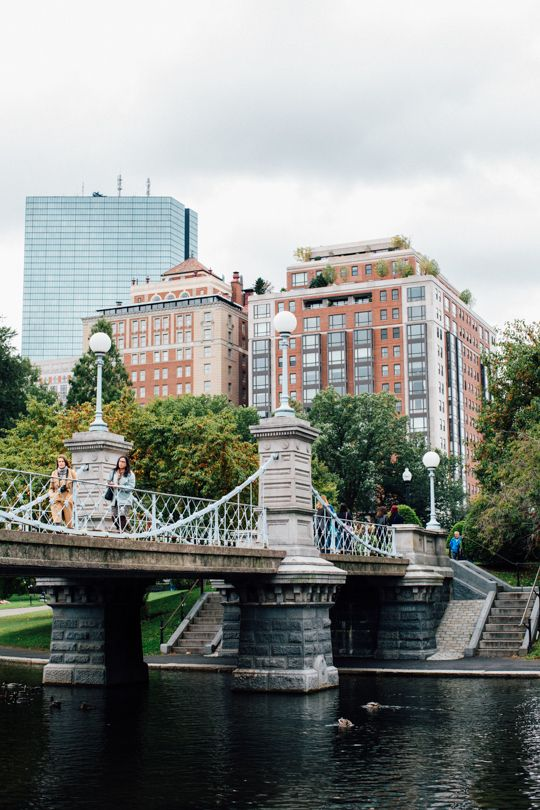 An Instagramable guide to visiting Boston! - Sugar and Cloth - Travel - Boston Public Gardens