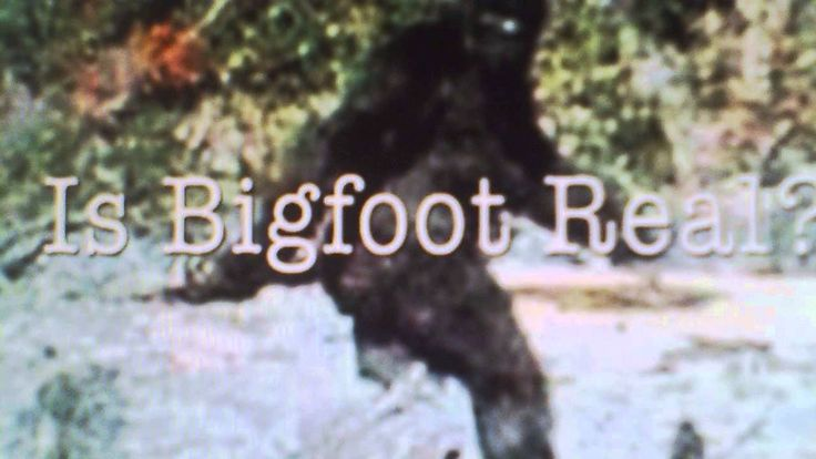 IS BIGFOOT REAL