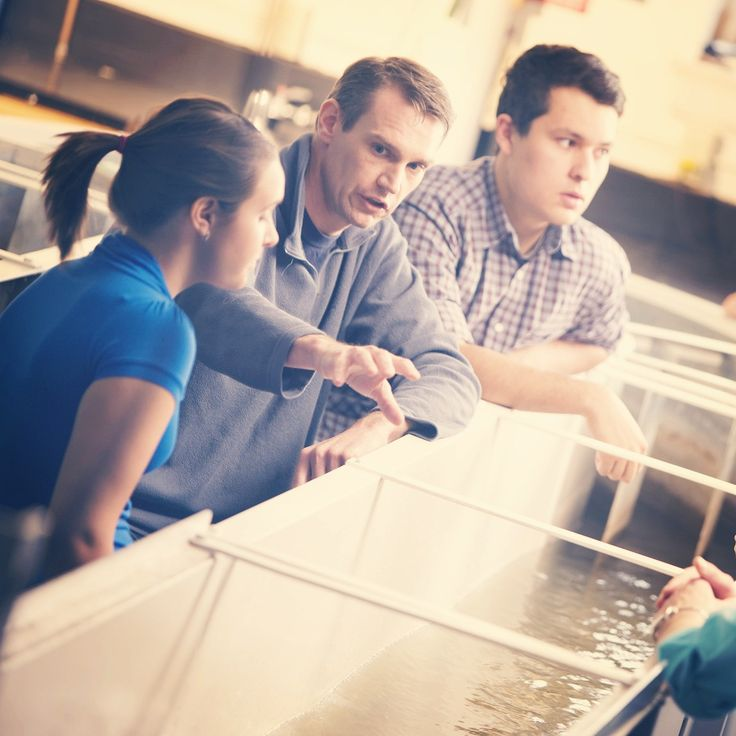 Bachelor of Science in Environmental Science https://admission.uoguelph.ca/Template.aspx?SiteID=b5e6dc06-75a5-4164-a5a3-d1af8541dcd7