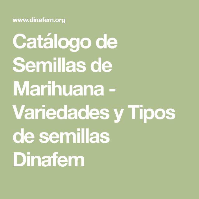 Catálogo de Semillas de Marihuana - Variedades y Tipos de semillas Dinafem
