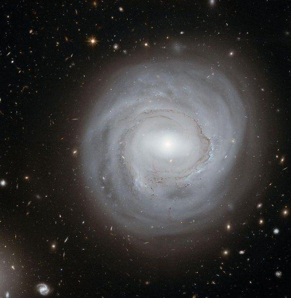 NGC 4921 es una galaxia espiral barrada situada en la constelación de Coma Berenices, a una distancia de 320 millones de años luz de la Vía Láctea.  Es el prototipo de galaxia anémica; contiene muy poco hidrógeno neutro estando además todo él concentrado dentro del disco óptico de la galaxia y mostrando perturbaciones hacia el lado SE de ésta -todo ello muy posiblemente causado por interacción con el gas caliente presente en el medio intergaláctico.