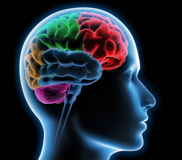 #Neurology and #Neurosurgery At #Jehangir in #Pune  At Jehangir Brain & Spine Care provides 24/7 care for all neurological injuries and emergency #NeuroCare. The vastly experienced team of #Neurosurgeons and #Neurologists, backed by the most comprehensive Neuro-diagnostic and imaging facilities, positions the hospital among the best in the region.  http://www.jehangirhospital.com/centres-of-excellence/neurology-and-neurosurgery-pune