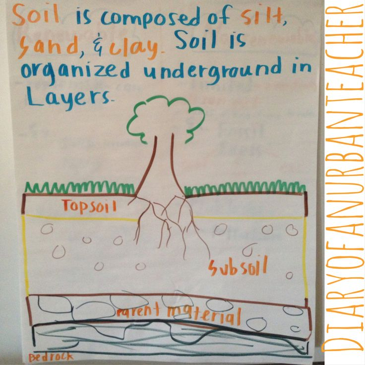 1365 best images about anchor charts on pinterest making for Soil 1st grade