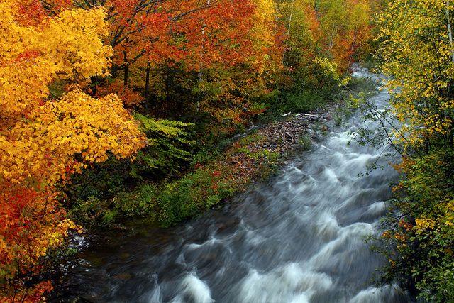 Agawa Canyon - The beauty of fall!
