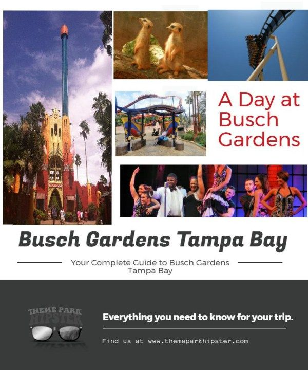 17 best ideas about busch gardens tampa bay on pinterest busch gardens tampa bush garden for Best day go busch gardens tampa
