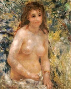 Pierre-Auguste Renoir - Renoir/ Torse de femme au soleil /c.1876