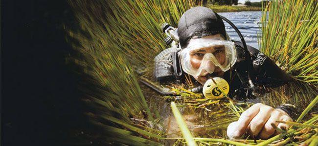 Recogedor de pelotas de golf bajo el agua.  Es uno de  trabajos más raros del mundo pero también de los más entretenidos. Puede trabajar en Florida, donde los campos de golf de la costa dorada dejan cada año miles de pelotas sumergidas.  Un ejemplo es el campo de golf TPC-Sawgrass de Florida, en los Estados Unidos, donde se encuentra uno de los hoyos más complicados de este deporte. La empresa contrata submarinistas para recoger todas las pelotas que terminan en el agua, unas 120.000 al año…