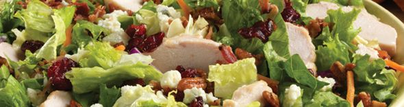 My new favorite salad, roasted chicken, Romain or ice berg lettuce, dried cranberries, honey roasted pecans, bacon and sweet Italian dressing. (bob evans adds blue cheese but I do not)