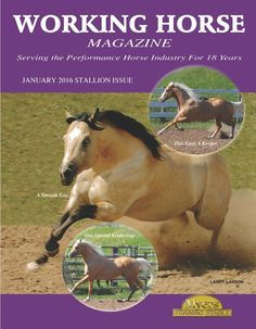 Magazine Archives — Working Horse Magazine