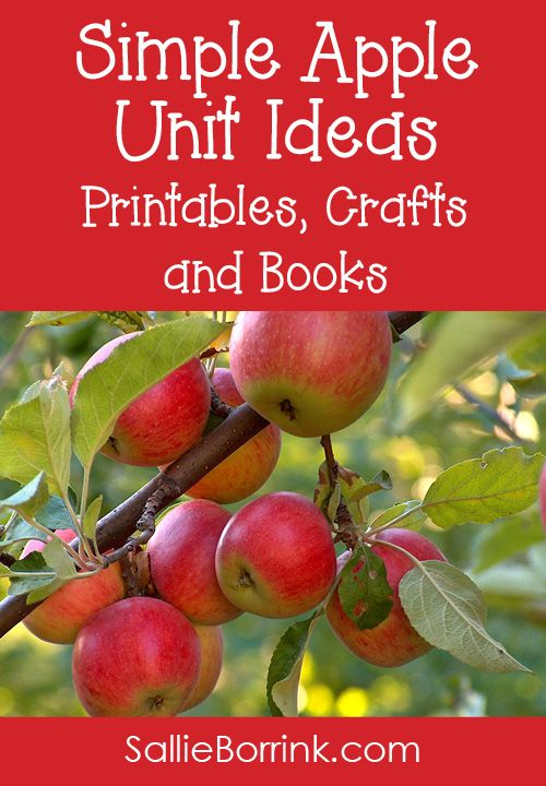 Discover simple apple unit printables, crafts, and books that capture all the fun of the wonderful fall season!