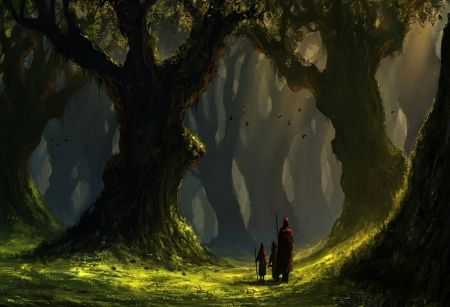 Image result for dark forest with sunlight