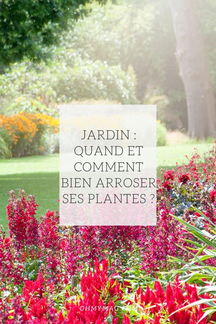 Jardin Quand Et Comment Bien Arroser Ses Plantes Video