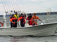 You can participate on a high-standard fishing safari on Eastern Gulf of Finland.