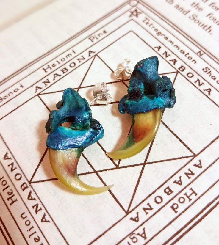 Wildcat Claw ear-studs!  Real bone jewellery earrings from www.etsy.com/uk/shop/chrisrichfordart?section_id=18789597&ref=shopsection_leftnav_3