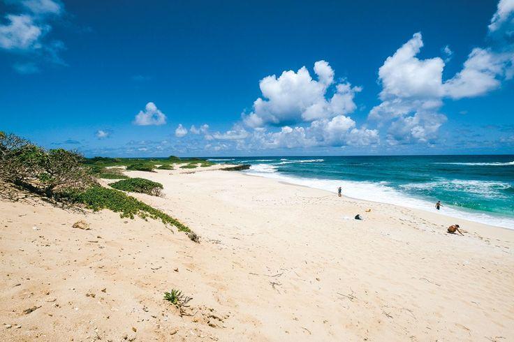 Hidden white-sand beach near Turtle Bay Resort, only reachable by hiking or biking.