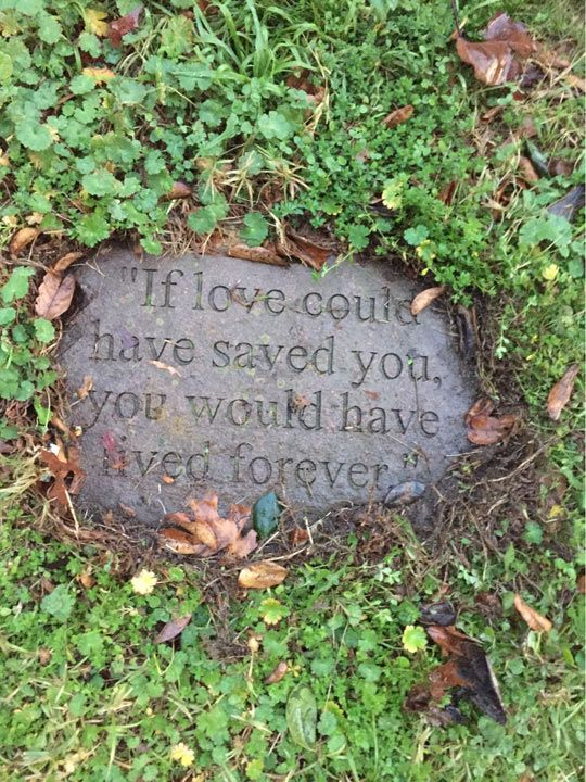 """""""If love could have saved you"""" beautiful tombstone"""