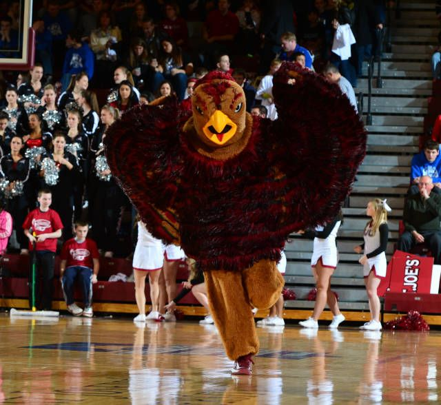 17 Best Images About College Mascots: Atlantic 10 On Pinterest