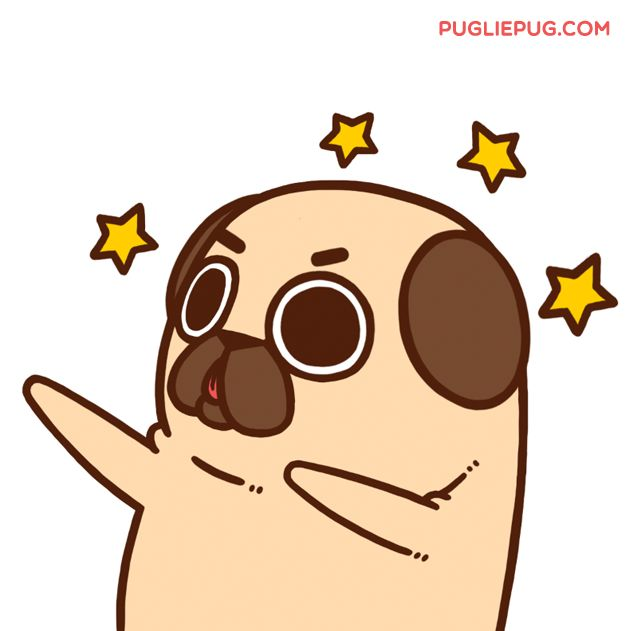 Puglie Pug — It's the start of the week - make it YOUR week!...